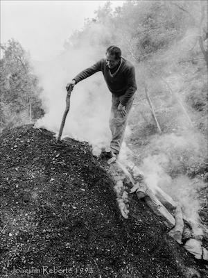 L'art de carbonejar. Hist�ria i cultura dels nostres boscos